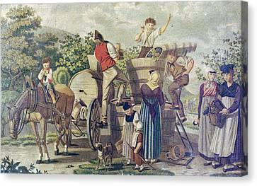 The Harvesting Of Wine Grapes, 19th Century Engraving, Time Canvas Print