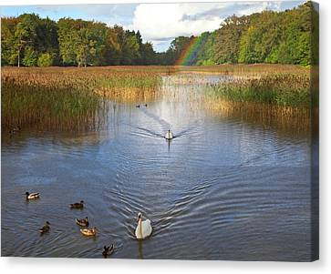 The Lake At Emo Court, Emo Village Canvas Print by Panoramic Images