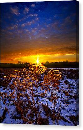 The Little Things Canvas Print by Phil Koch