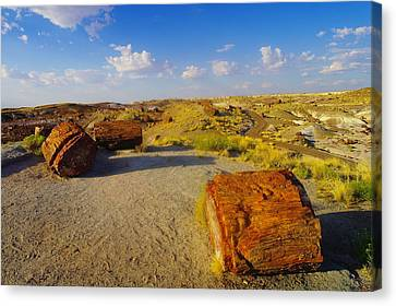 Arizonia Canvas Print - The Painted Desert by Jeff Swan