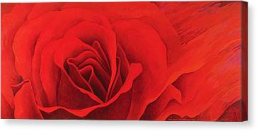 The Rose, In The Festival Of Light Canvas Print by Myung-Bo Sim