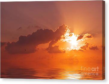 The Sunset Canvas Print by Angela Doelling AD DESIGN Photo and PhotoArt