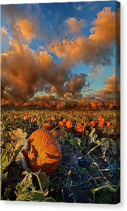 Picnic Table Canvas Print - The Survivors by Phil Koch