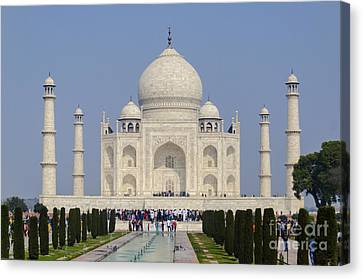 The Taj Mahal Canvas Print by Pravine Chester