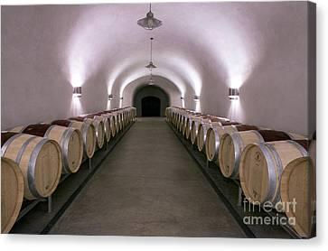 Napa Canvas Print - The Wine Cave by Jon Neidert