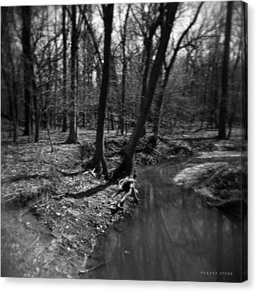 Thorn Creek Canvas Print