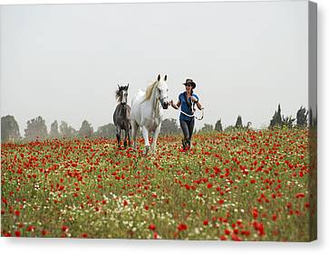 Three At The Poppies' Field... 3 Canvas Print