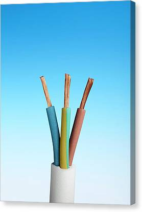 Three-core Electrical Cable Canvas Print by Science Photo Library