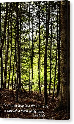 Thru The Trees With John Muir Quote Canvas Print