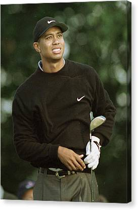 Tiger Woods. Canvas Print