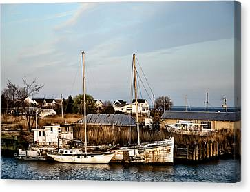 Tilghman Island Maryland Canvas Print by Bill Cannon