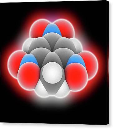 Tnt Molecule Canvas Print