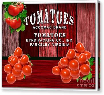 Tomato Farm Canvas Print by Marvin Blaine