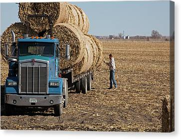Transporting Bales Of Hay Canvas Print