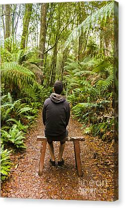 Travel Man Sitting In A Green Lush Fern Forest Canvas Print by Jorgo Photography - Wall Art Gallery