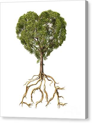 Tree With Foliage In The Shape Canvas Print