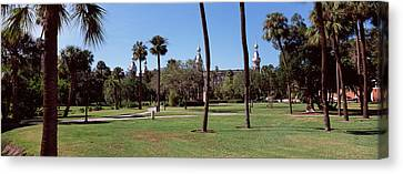 Trees In A Campus, Plant Park Canvas Print by Panoramic Images