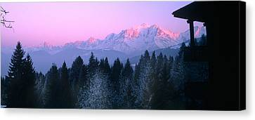 Trees With Snow Covered Mountains Canvas Print by Panoramic Images