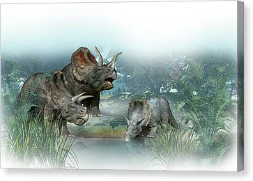 Triceratops Canvas Print - Triceratops Old And Young by Mikkel Juul Jensen