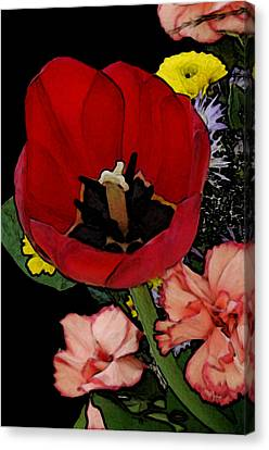 Tulip Number One Canvas Print