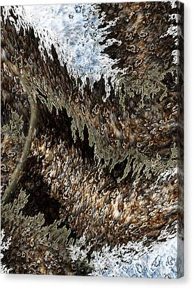 Tumult Canvas Print by Christopher Gaston