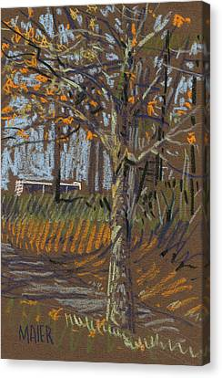 Turning Leaves Canvas Print by Donald Maier