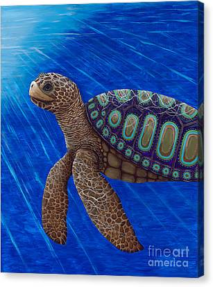 Turtle Painting Bomber Triptych 2 Canvas Print by Rebecca Parker