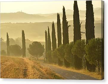 Tuscany Canvas Print by Christian Heeb