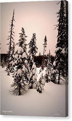 Twilightwinter Canvas Print by Guy Hoffman