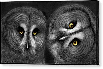 Raptor Canvas Print - Two Owls Looking by Miki Krenelka