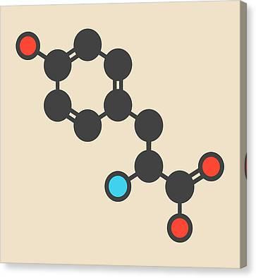 Tyrosine Amino Acid Molecule Canvas Print by Molekuul