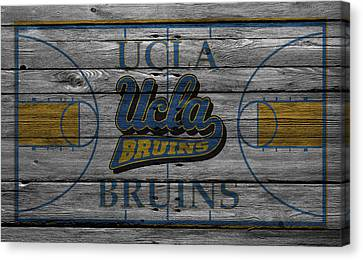 Ucla Bruins Canvas Print