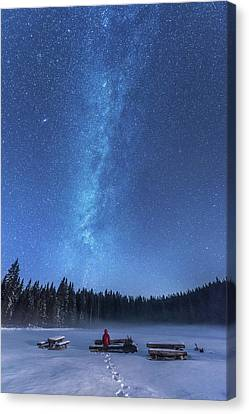 Benches Canvas Print - Under The Starry Night by Ales Krivec