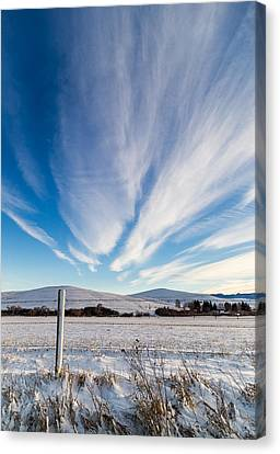 Under Wyoming Skies Canvas Print