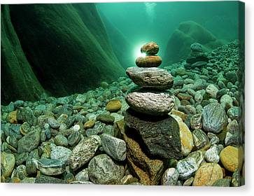 Underwaterpicture From The River Canvas Print by Thomas Aichinger