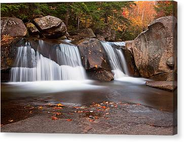 Upper Screw Auger Falls Canvas Print by Patrick Downey