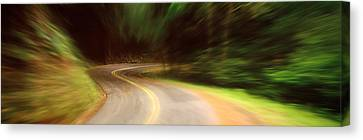 Usa , California, Marin County, Road Canvas Print by Panoramic Images