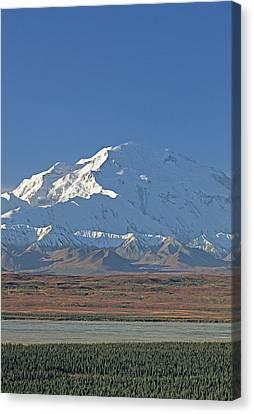 Usa, Alaska, Mount Mckinley, Mckinley Canvas Print by Gerry Reynolds