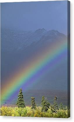 Usa, Alaska, Rainbow, Tundra, Fall Canvas Print