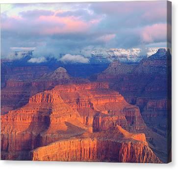 Petrified Forest Arizona Canvas Print - Usa, Arizona, Grand Canyon National by Jaynes Gallery