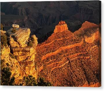 Usa, Arizona, Grand Canyon National Park Canvas Print