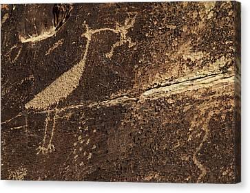 Petrified Forest Arizona Canvas Print - Usa, Arizona, Petrified Forest by Kymri Wilt