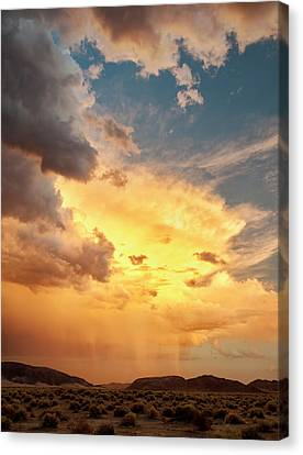 Usa, California, Mojave National Canvas Print by Ann Collins