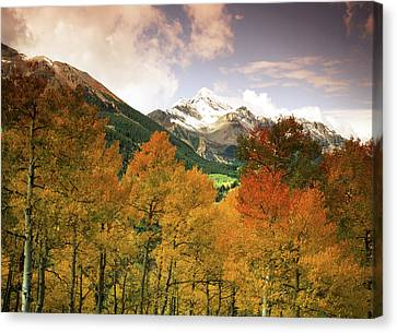 Usa, Colorado, San Juan National Canvas Print by Stuart Westmorland