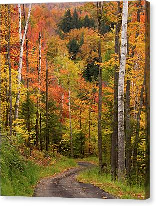 Maine Mountains Canvas Print - Usa, Maine, Bethel by Jaynes Gallery