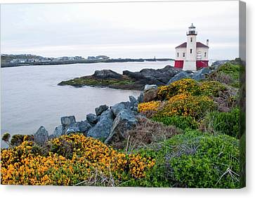 Usa, Oregon, Bandon, Coquille River Canvas Print by Peter Hawkins