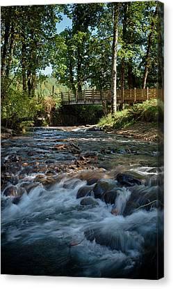 Wayside Canvas Print - Usa, Oregon, Scio, Crabtree Creek by Rick A Brown