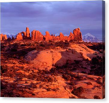 Coral Pink Sand Dunes Canvas Print - Usa, Utah Arches National Park Arches by Jaynes Gallery