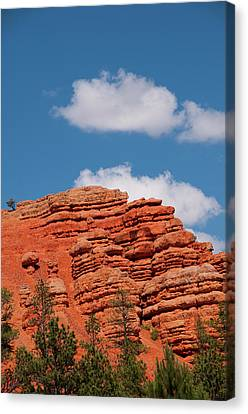 Usa Utah, Red Canyon In Dixie National Canvas Print by Lee Foster