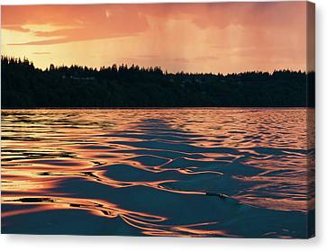 Usa, Wa, Puget Sound Canvas Print by Trish Drury